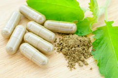 порошок-и-капсу-ы-фитотерапии-с-зе-еным-органическим-leav-травы-63482299